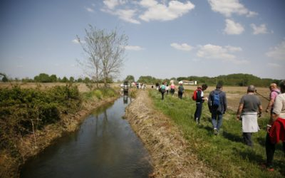 """Uscita """"L'essenza del Riso"""" Pasqua 2019 Trino, Vercelli e Lago di Viverone"""