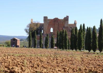 191004 Week End Monteriggioni-Poggibonsi-San Galgano 4-6 ottobre 2019 268 San Galgano Abazia San Galgano Canon